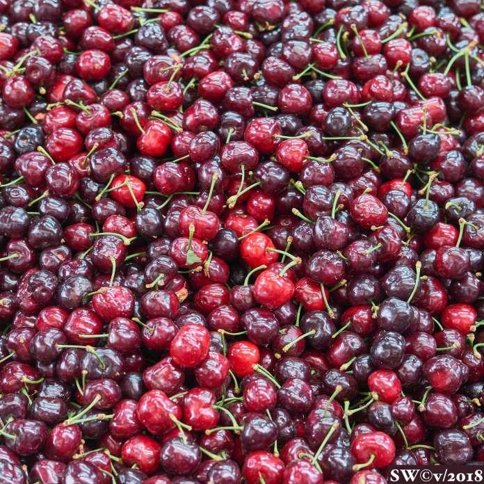 Cherry season here