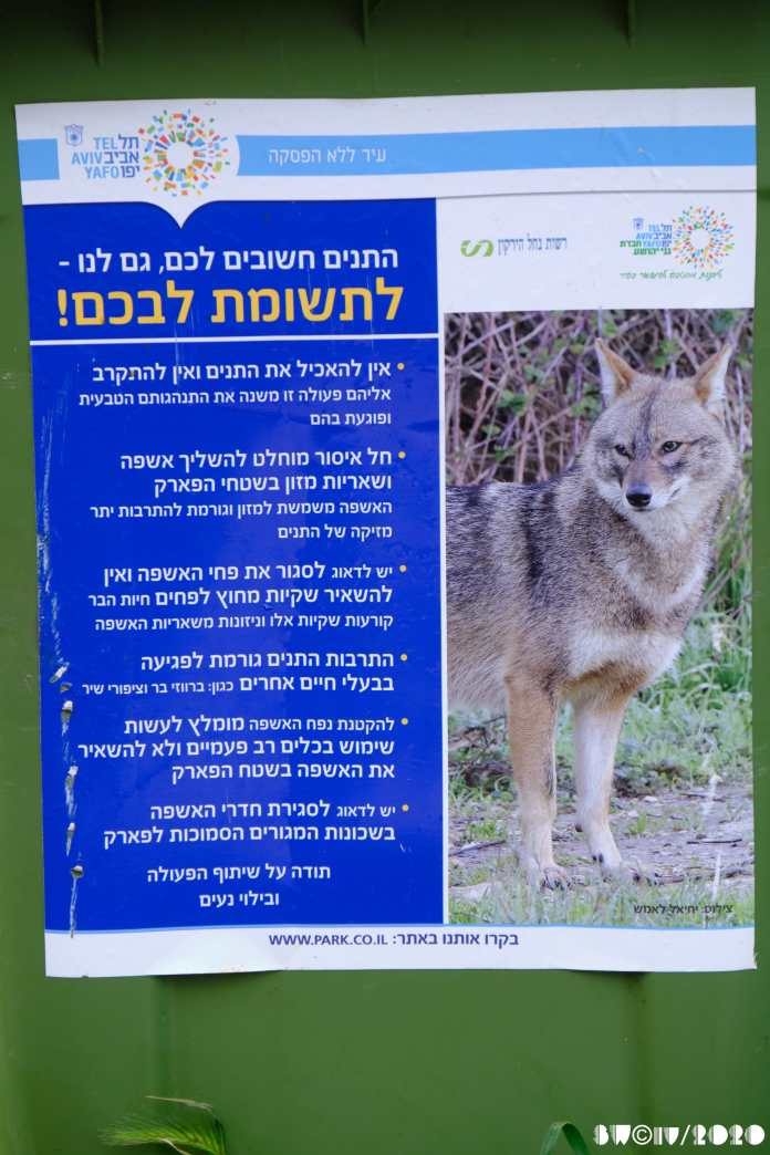 Don't feed the jackals