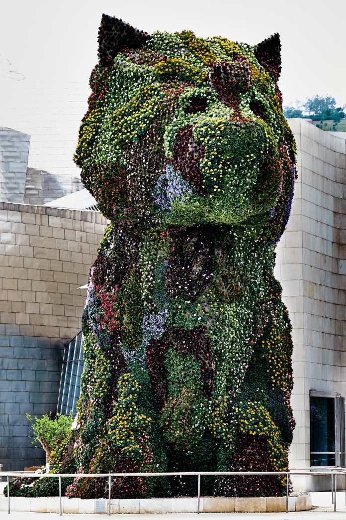 Puppy (Bilbao).jpg