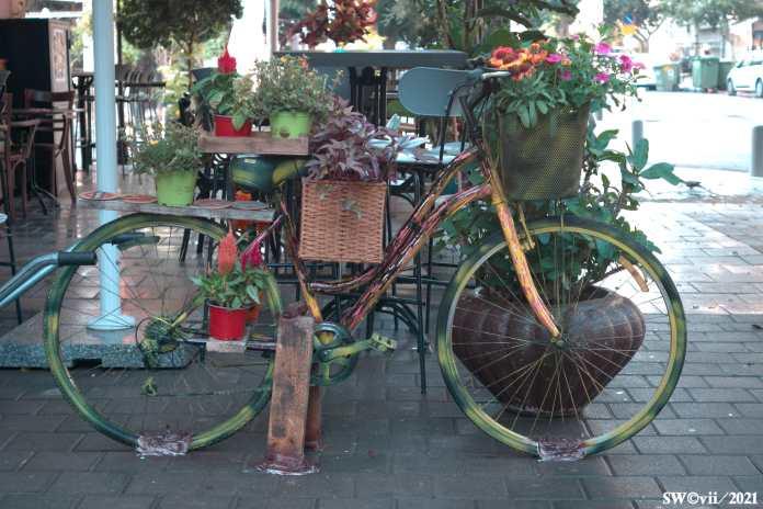 Bike installation