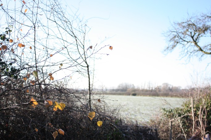 Batherton in Winter