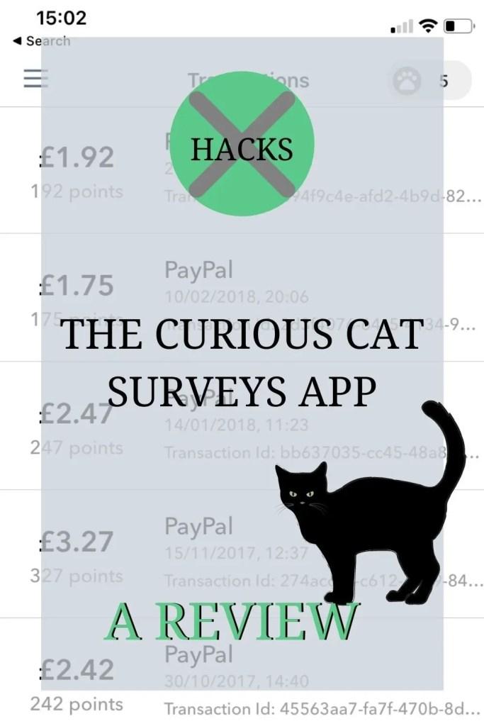 Curious Cat surveys app review