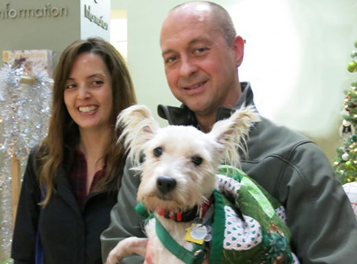 Clint Bruton and Tammy Fields of Northeast Portland took Beaugard, a 2-year-old West Highland terrier, home for Christmas. (Oregon Humane Society)