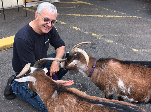 On Bacchi's last day of business in Roseway, neighbor Erica Somes brought her family's goats by the deli to say farewell to owner Mark Caso. (Erica Somes)