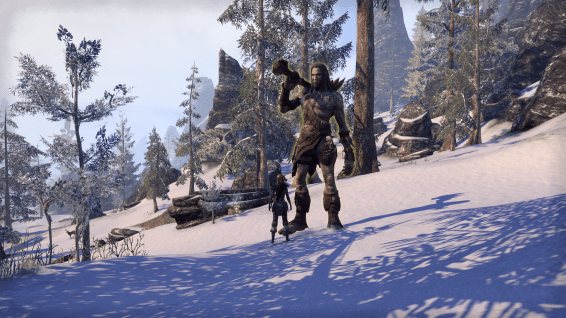 ESO: my bosmer feels quite small in the land of the nords but this giant...