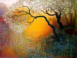 tree nature radiant light