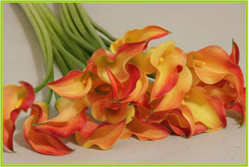 Calla Selina - by Starbright Floral Design