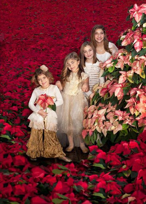 PHOTOS Teresa Giudice Shares 2013 Giudice Family Christmas