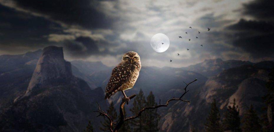 full moon in aries october 2021