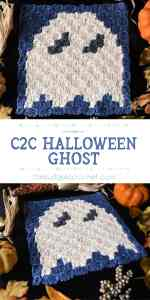 C2C Ghost PIN