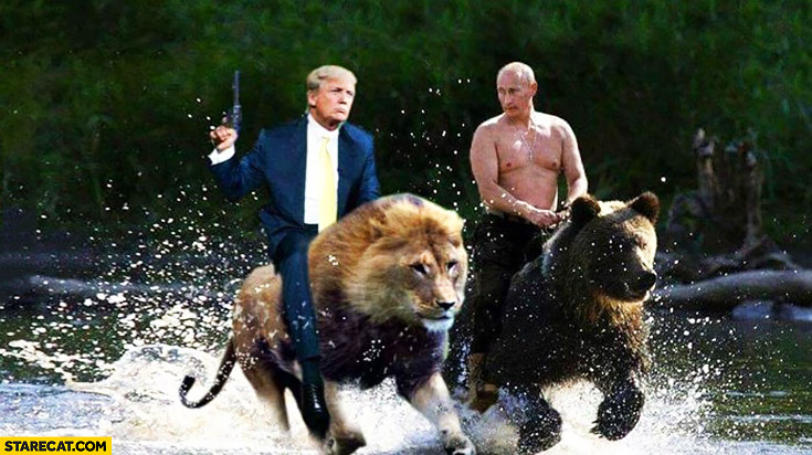 Image result for putin bear