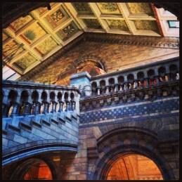 Natural History Museum, London 008