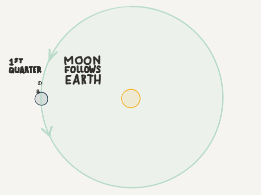 First quarter moon follows the earth in the earth's orbit