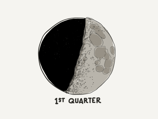 1st quarter moon - Daniel Cummings