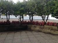 Urban garden outside VCON.