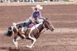 Ketchum Kalf Rodeo 7081