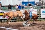 Ketchum Kalf Rodeo 7315