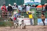Ketchum Kalf Rodeo 7925