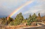 Rainbow_PuckerHuddle_WM2-0452 - Copy
