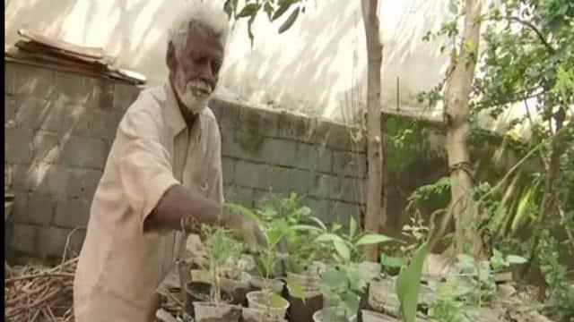 सड़क किनारे जमीन पर रख औषधीय पौधे बेच रहा था 79 वर्षीय बुजुर्ग, किसी ने फोटो वायरल कर दी, अब किस्मत ही बदल गई