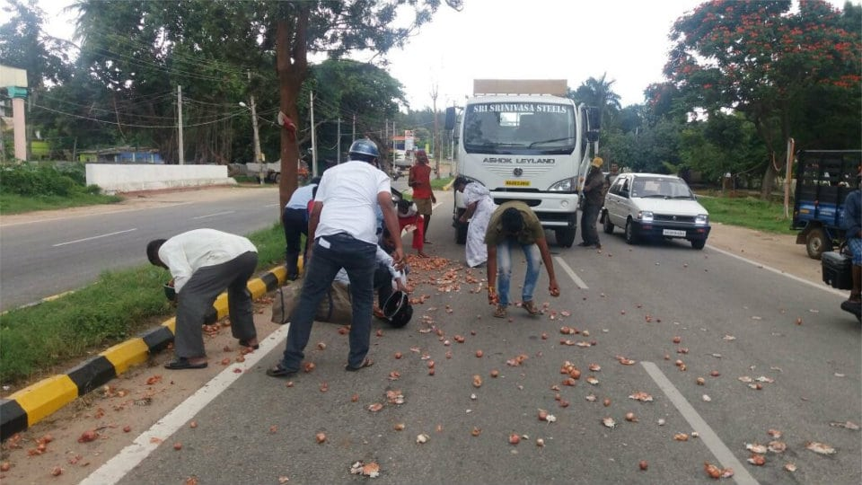 People's mad scramble to pick onions on road