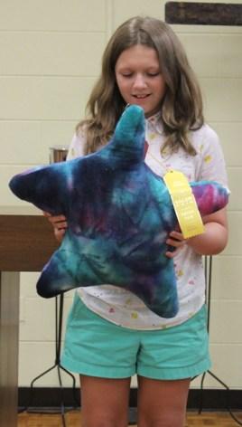 Abigail Cronise - Star Pillow