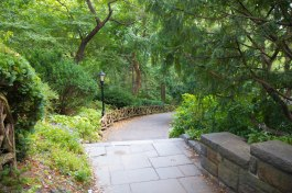 a wandering pathway through the greenery of Central Park, the emerald of NYC