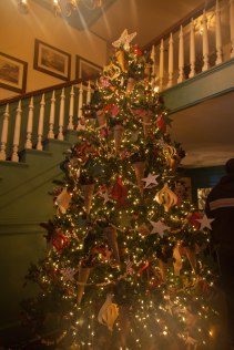 the cheerfully decorated christmas tree