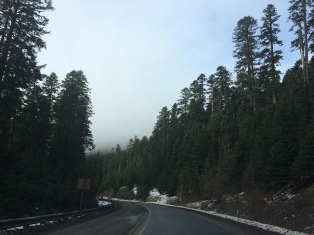 Oregon - 30