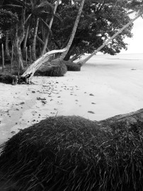 black and white photo of brazilian beach