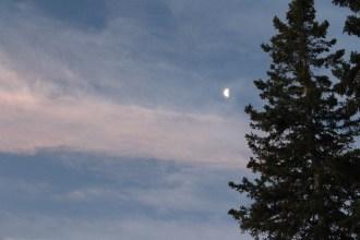 Pastel moonshot