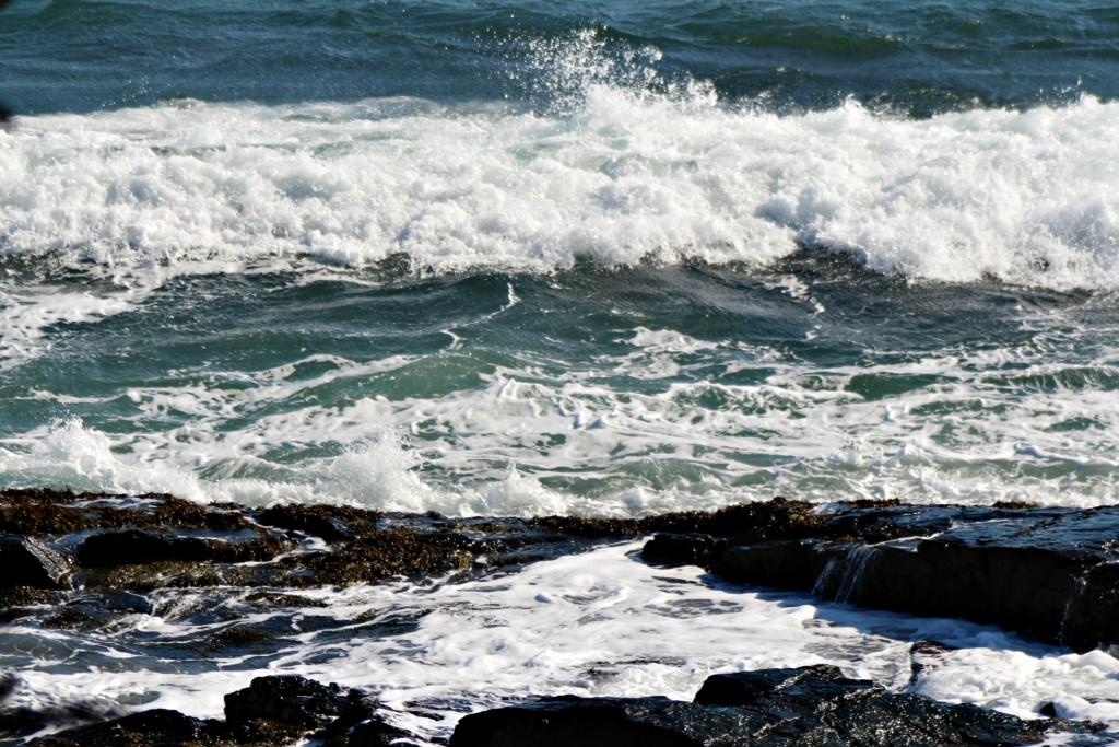 Ocean blue / Ocean green