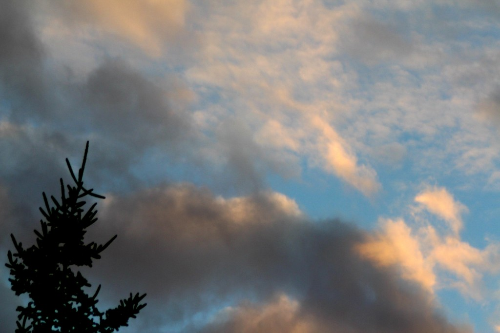 Sunset16