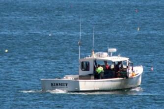 Kismet5