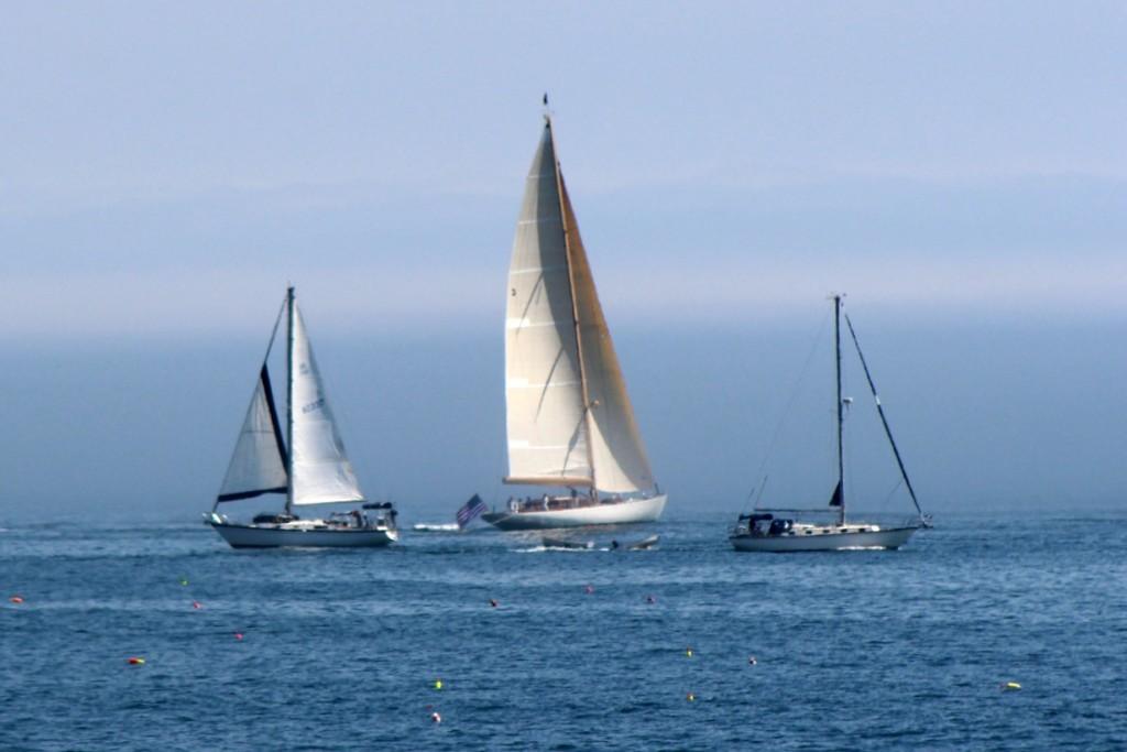 Sailing, sailing, through the foggy skies