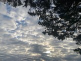 IMG_0388Clouds