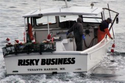 IMG_3447RiskyBusiness