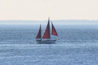 IMG_3969Sailboat