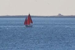 IMG_3982Sailboat
