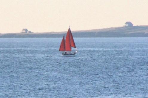 IMG_3985Sailboat