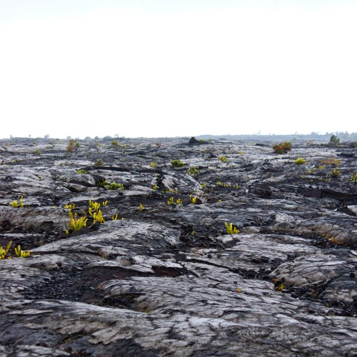 Photo Review: Volcanoes National Park