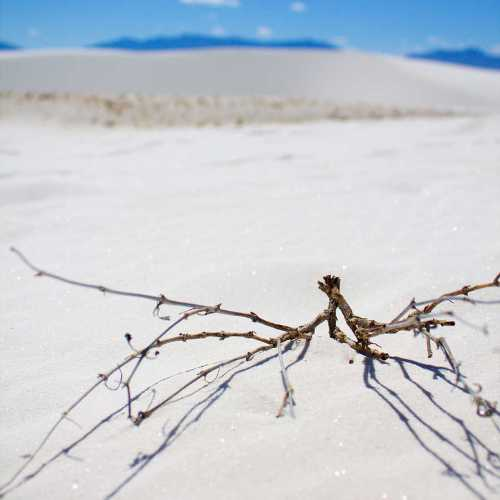 Photo review: White Sands National Monument