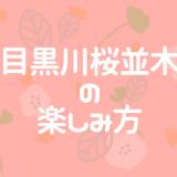 【2019年用】目黒川の桜並木の楽しみ方。混雑を避けて撮影を楽しむ方法は?