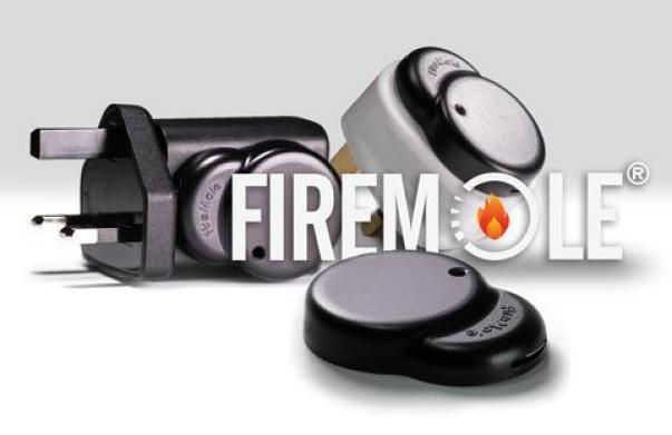 Image result for Firemole