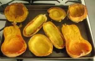 How to: Squash > Start Cooking