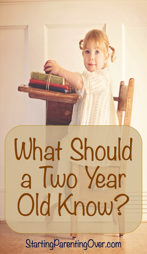 Wondering what your two year old should know? Check out this list!