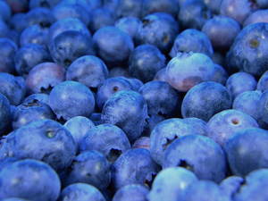 Keto Diet Blueberries