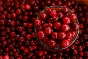Cranberries Low Carb Diet