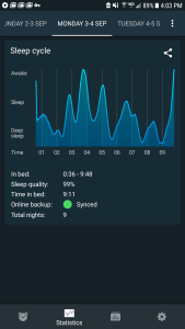 sleep app hypnogram