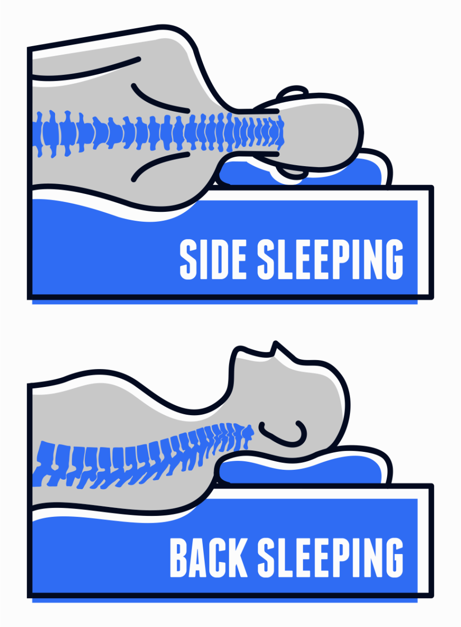 Proper Neck and Spine Position - Best Pillows for Neck Pain